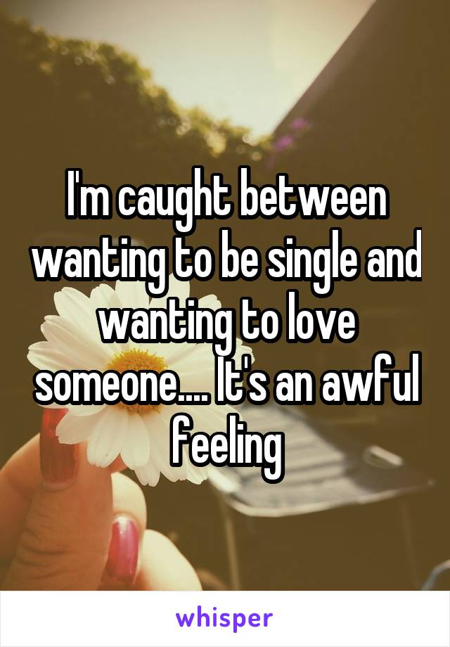 I'm caught between wanting to be single and wanting to love someone.... It's an awful feeling