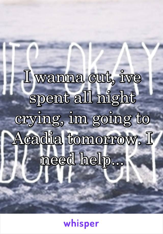 I wanna cut, ive spent all night crying, im going to Acadia tomorrow. I need help...