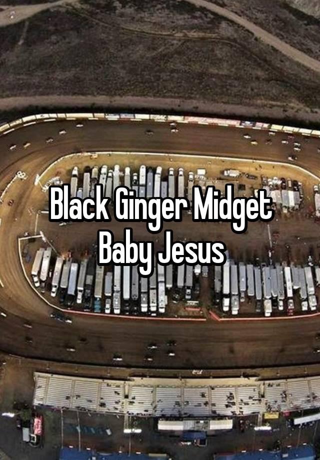 Black ginger midget