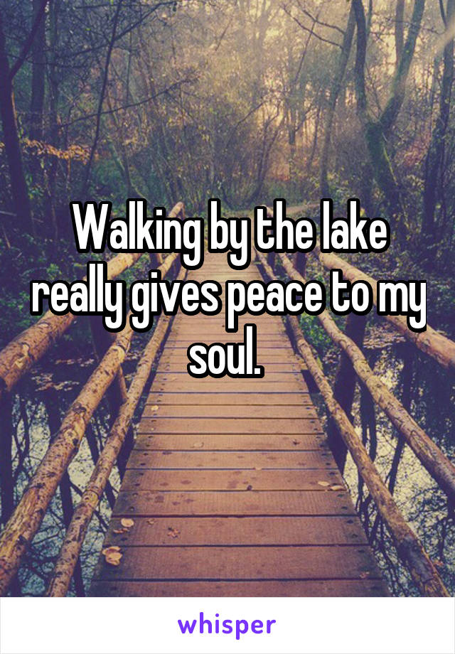 Walking by the lake really gives peace to my soul.