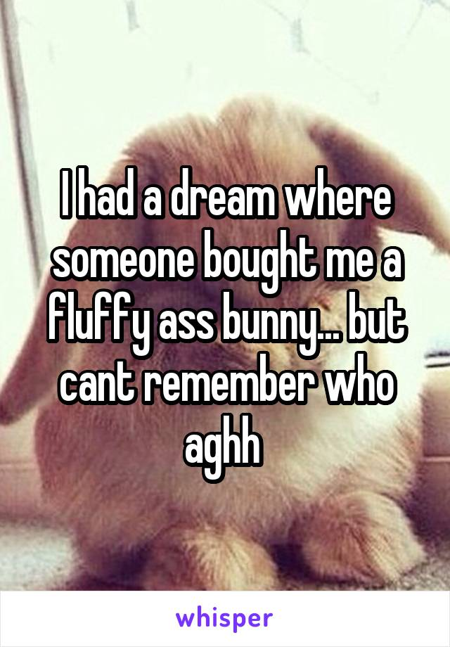 I had a dream where someone bought me a fluffy ass bunny... but cant remember who aghh