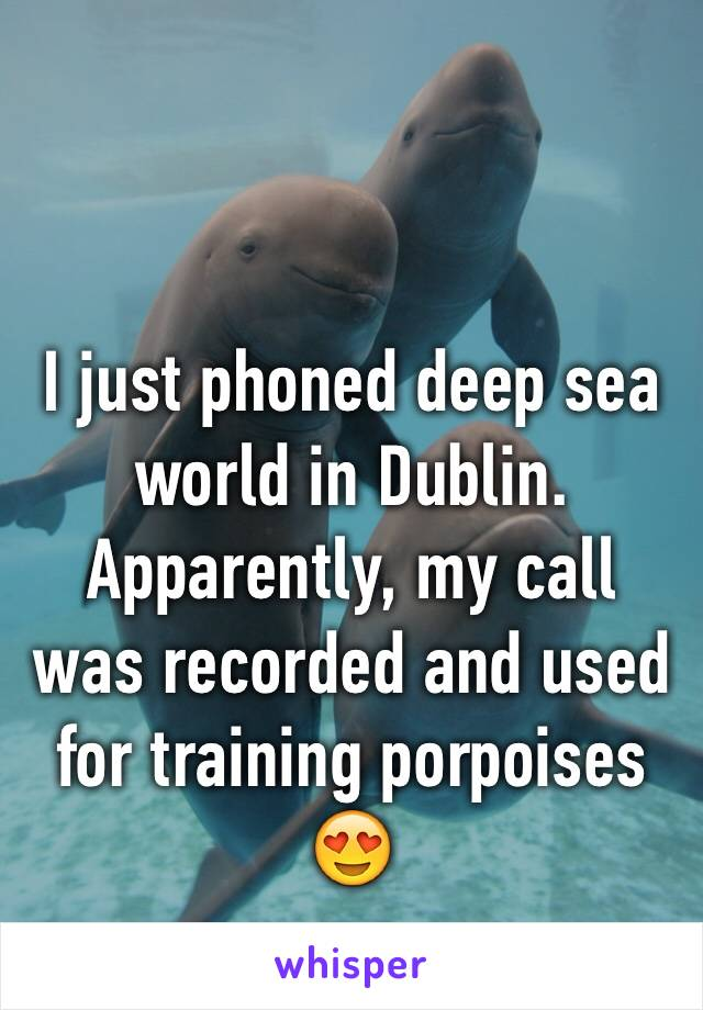 I just phoned deep sea world in Dublin. Apparently, my call was recorded and used for training porpoises 😍
