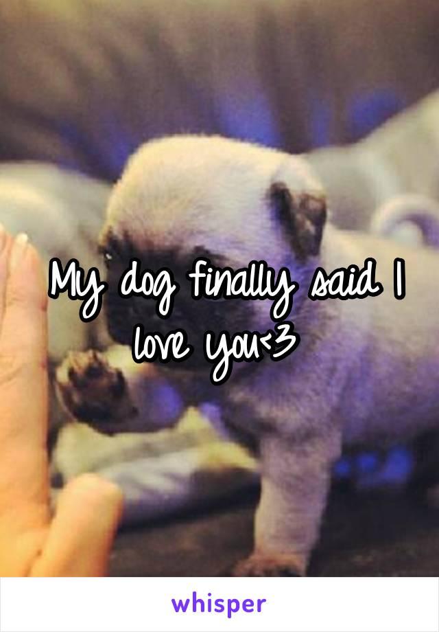 My dog finally said I love you<3