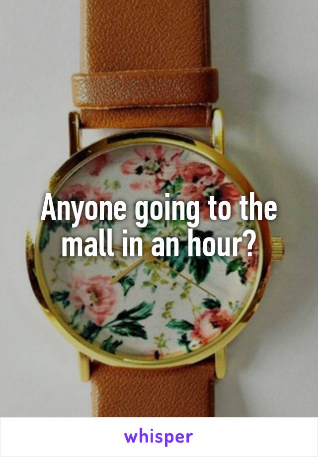 Anyone going to the mall in an hour?