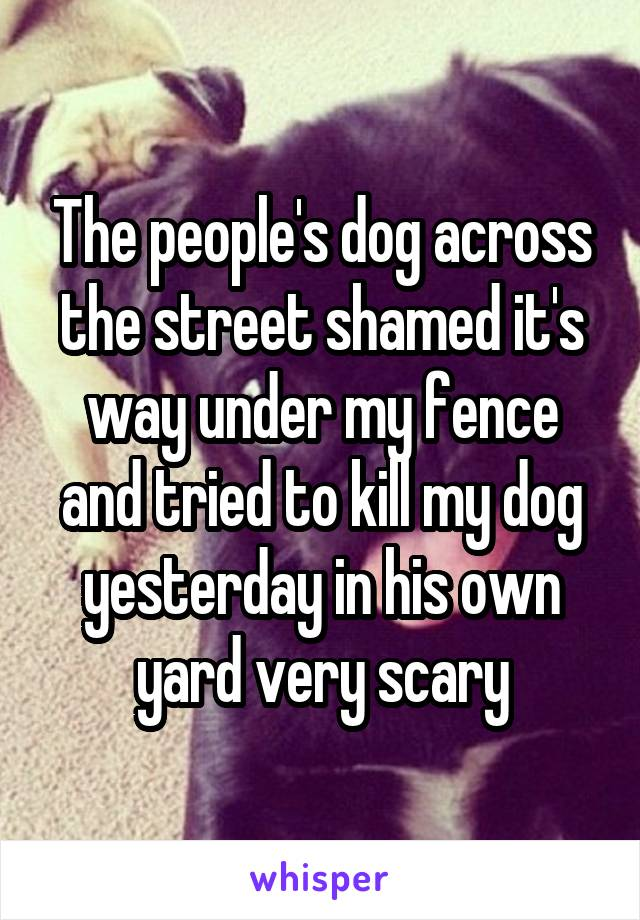The people's dog across the street shamed it's way under my fence and tried to kill my dog yesterday in his own yard very scary