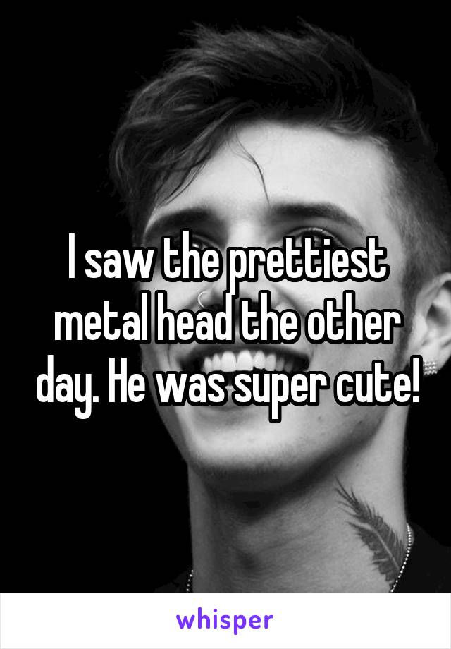 I saw the prettiest metal head the other day. He was super cute!