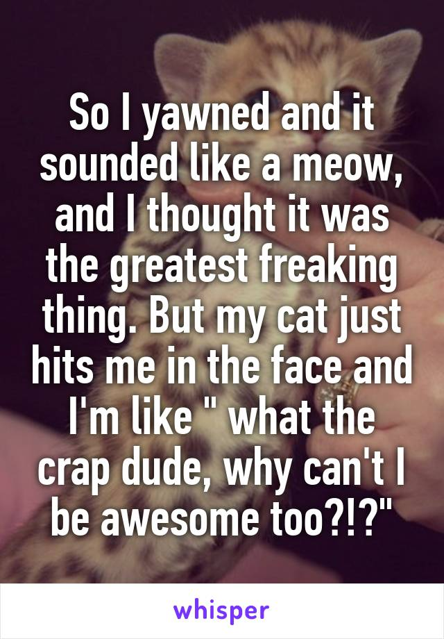 """So I yawned and it sounded like a meow, and I thought it was the greatest freaking thing. But my cat just hits me in the face and I'm like """" what the crap dude, why can't I be awesome too?!?"""""""