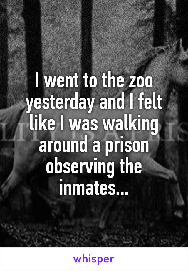 I went to the zoo yesterday and I felt like I was walking around a prison observing the inmates...