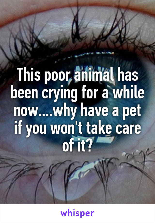 This poor animal has been crying for a while now....why have a pet if you won't take care of it?