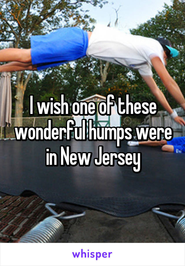 I wish one of these wonderful humps were in New Jersey