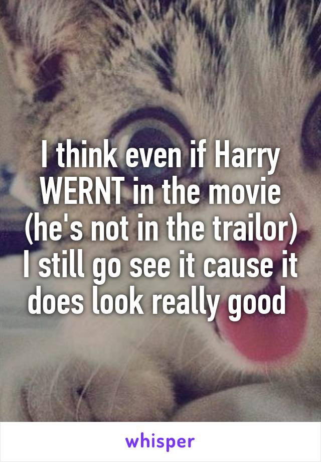 I think even if Harry WERNT in the movie (he's not in the trailor) I still go see it cause it does look really good