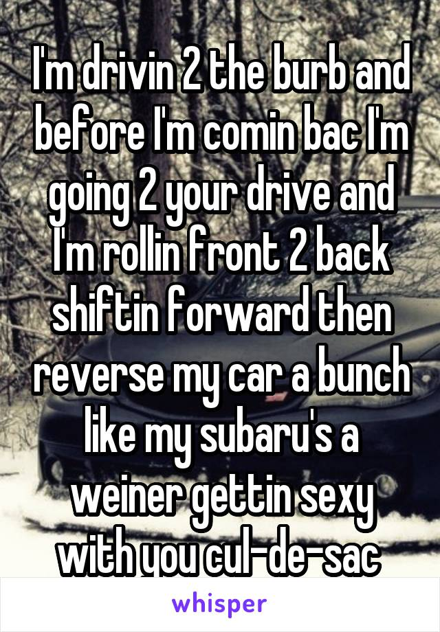 I'm drivin 2 the burb and before I'm comin bac I'm going 2 your drive and I'm rollin front 2 back shiftin forward then reverse my car a bunch like my subaru's a weiner gettin sexy with you cul-de-sac