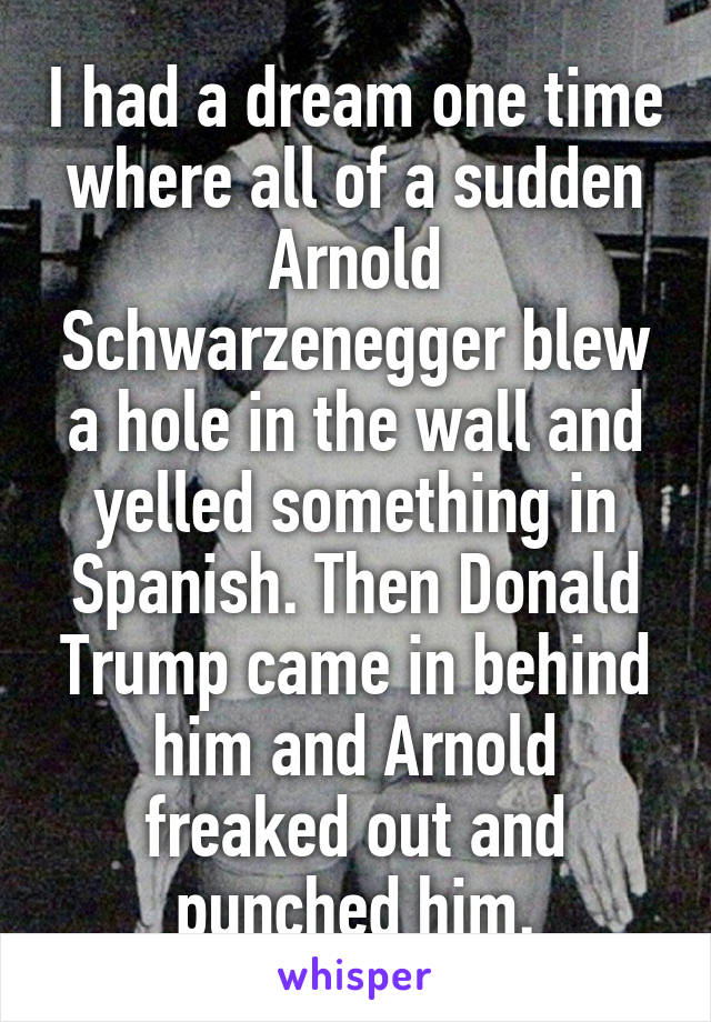 I had a dream one time where all of a sudden Arnold Schwarzenegger blew a hole in the wall and yelled something in Spanish. Then Donald Trump came in behind him and Arnold freaked out and punched him.