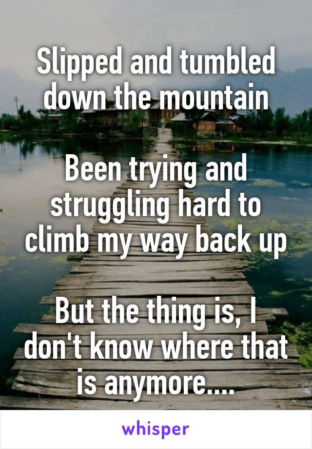 Slipped and tumbled down the mountain  Been trying and struggling hard to climb my way back up  But the thing is, I don't know where that is anymore....