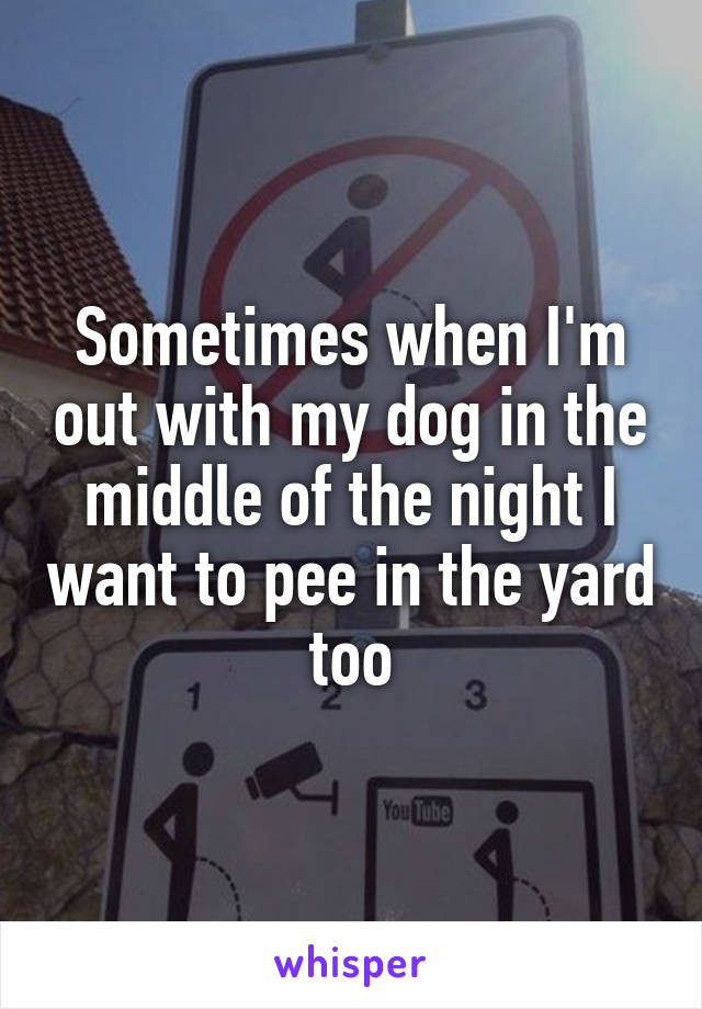 Sometimes when I'm out with my dog in the middle of the night I want to pee in the yard too