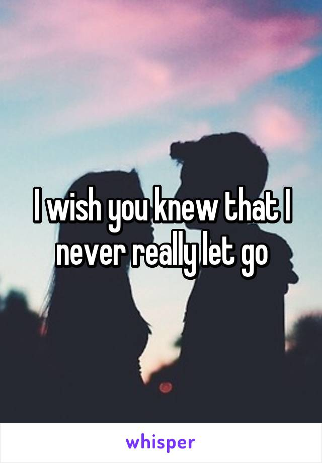 I wish you knew that I never really let go