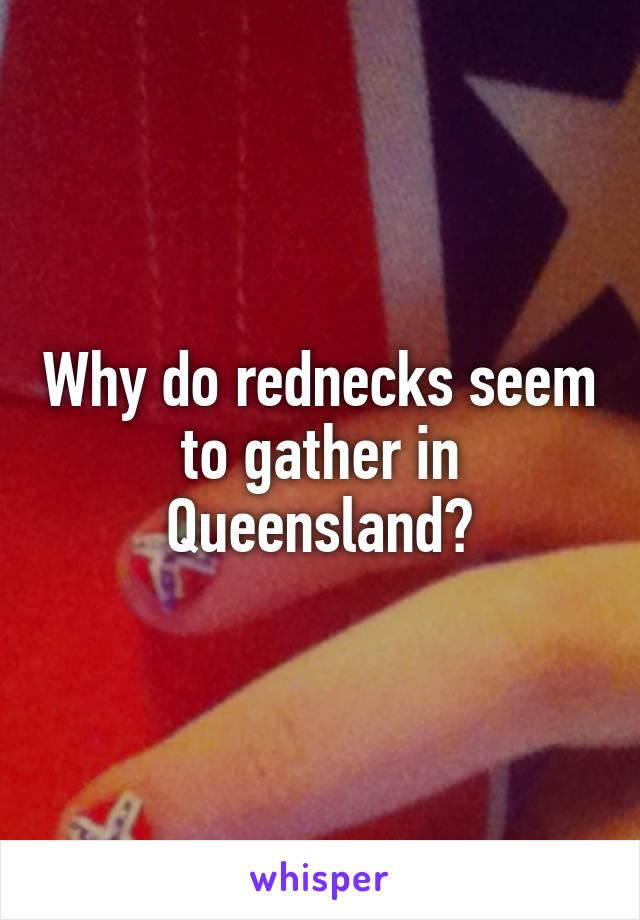 Why do rednecks seem to gather in Queensland?