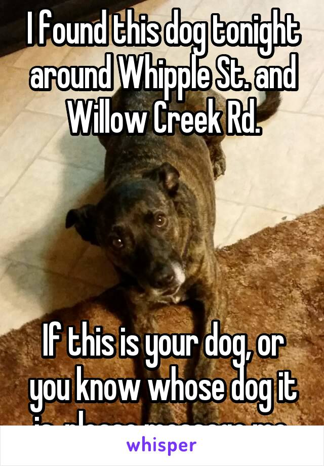 I found this dog tonight around Whipple St. and Willow Creek Rd.     If this is your dog, or you know whose dog it is, please message me.