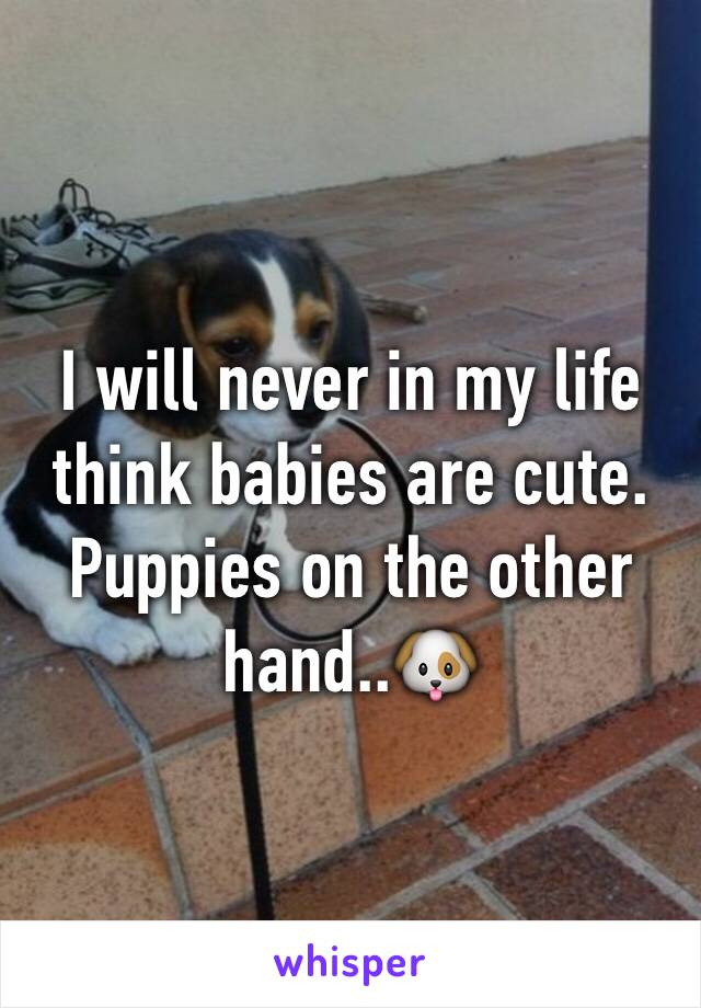 I will never in my life think babies are cute. Puppies on the other hand..🐶