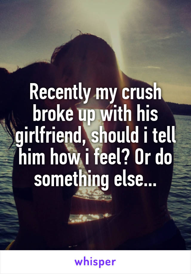 Recently my crush broke up with his girlfriend, should i tell him how i feel? Or do something else...