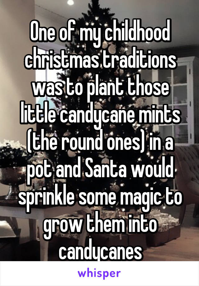 One of my childhood christmas traditions was to plant those little candycane mints (the round ones) in a pot and Santa would sprinkle some magic to grow them into candycanes