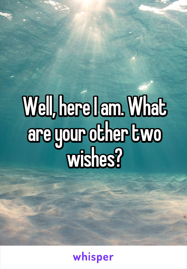 Well, here I am. What are your other two wishes?