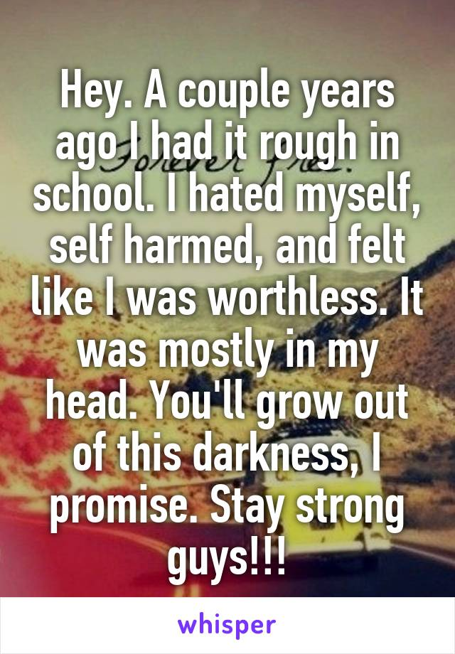 Hey. A couple years ago I had it rough in school. I hated myself, self harmed, and felt like I was worthless. It was mostly in my head. You'll grow out of this darkness, I promise. Stay strong guys!!!
