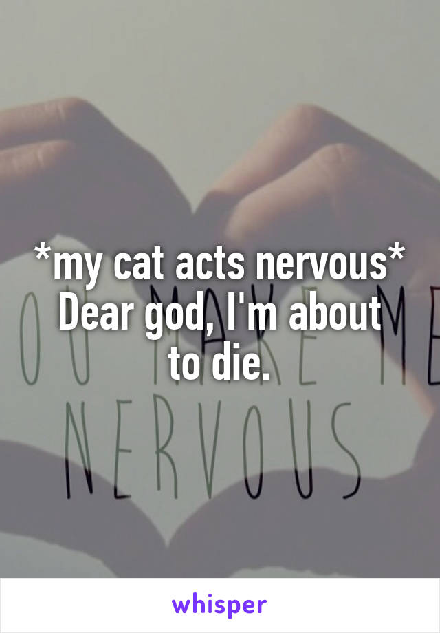 *my cat acts nervous* Dear god, I'm about to die.