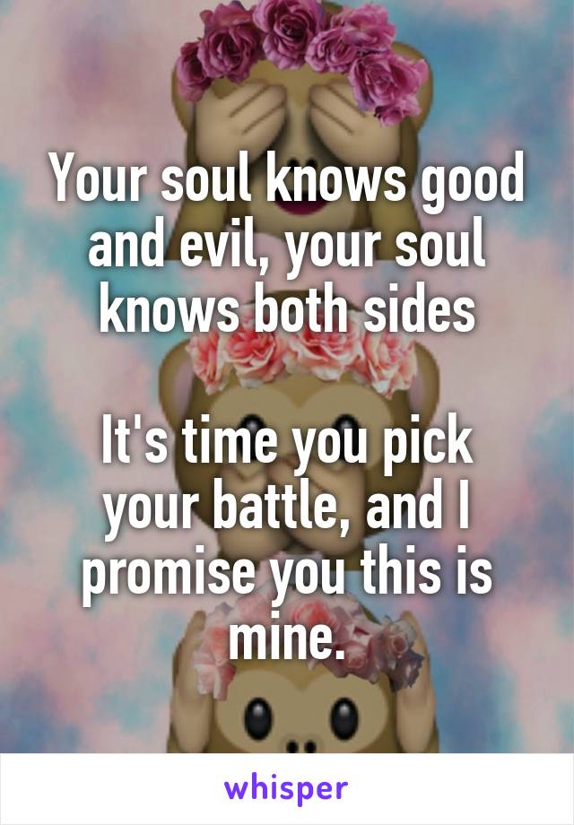 Your soul knows good and evil, your soul knows both sides  It's time you pick your battle, and I promise you this is mine.