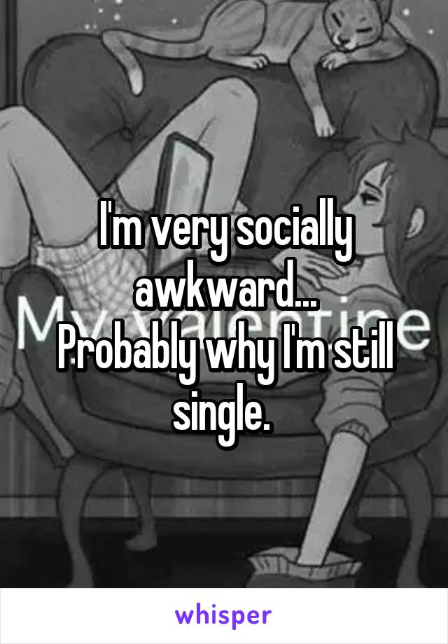 I'm very socially awkward... Probably why I'm still single.
