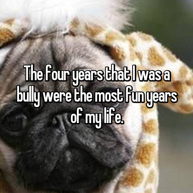 The four years that I was a bully were the most fun years of my life.