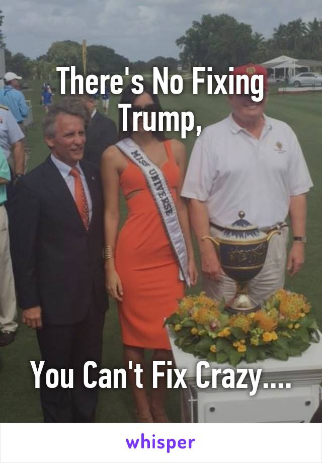 There's No Fixing Trump,       You Can't Fix Crazy....