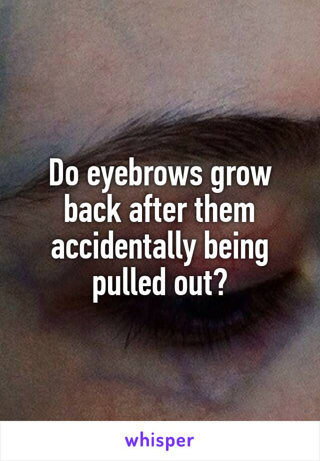 Do eyebrows grow back after them accidentally being pulled out?