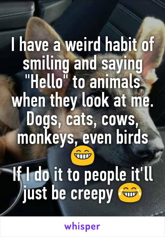 """I have a weird habit of smiling and saying """"Hello"""" to animals when they look at me. Dogs, cats, cows, monkeys, even birds 😁 If I do it to people it'll just be creepy 😂"""