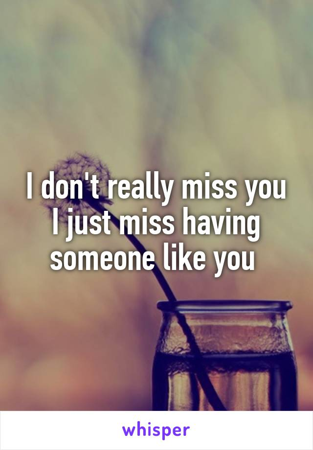 I don't really miss you I just miss having someone like you