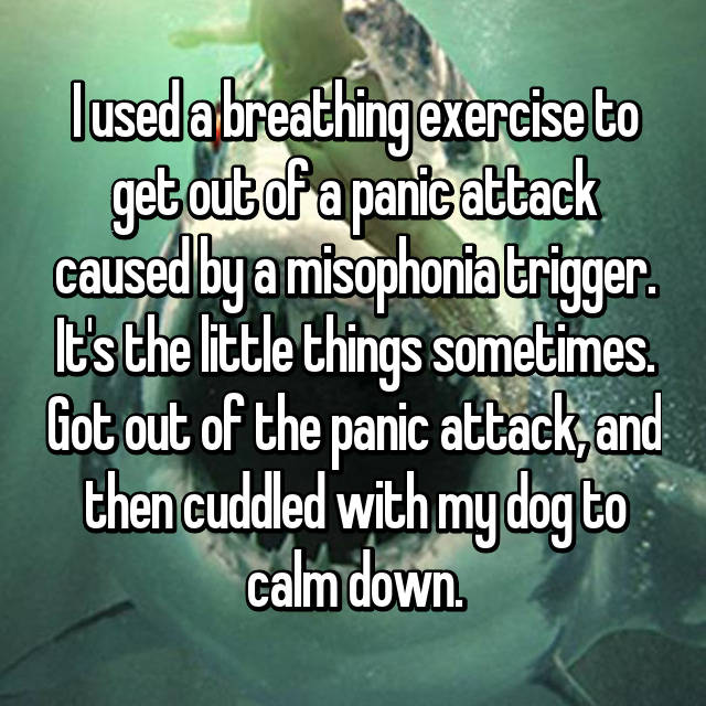 I used a breathing exercise to get out of a panic attack caused by a misophonia trigger. It's the little things sometimes. Got out of the panic attack, and then cuddled with my dog to calm down. 😊