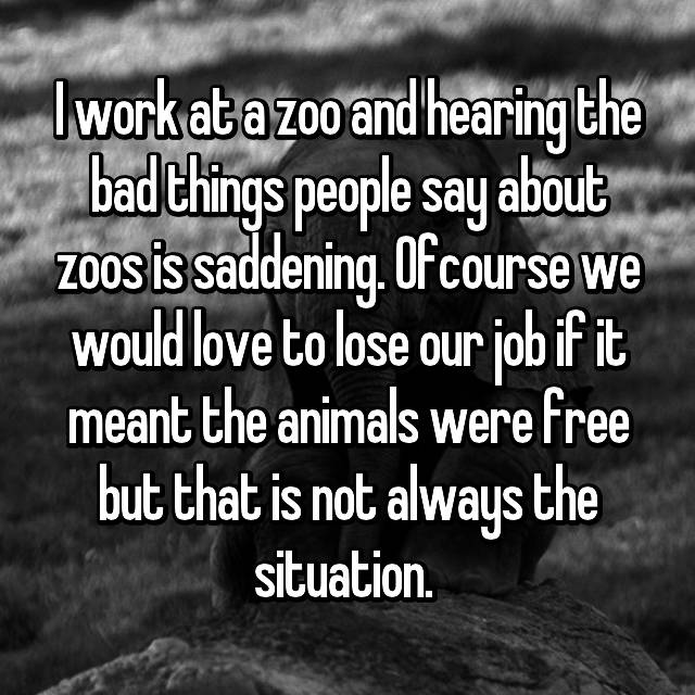 I work at a zoo and hearing the bad things people say about zoos is saddening. Ofcourse we would love to lose our job if it meant the animals were free but that is not always the situation.