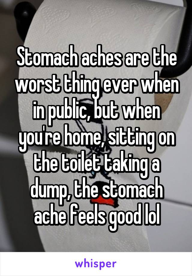 Stomach aches are the worst thing ever when in public, but when you're home, sitting on the toilet taking a dump, the stomach ache feels good lol
