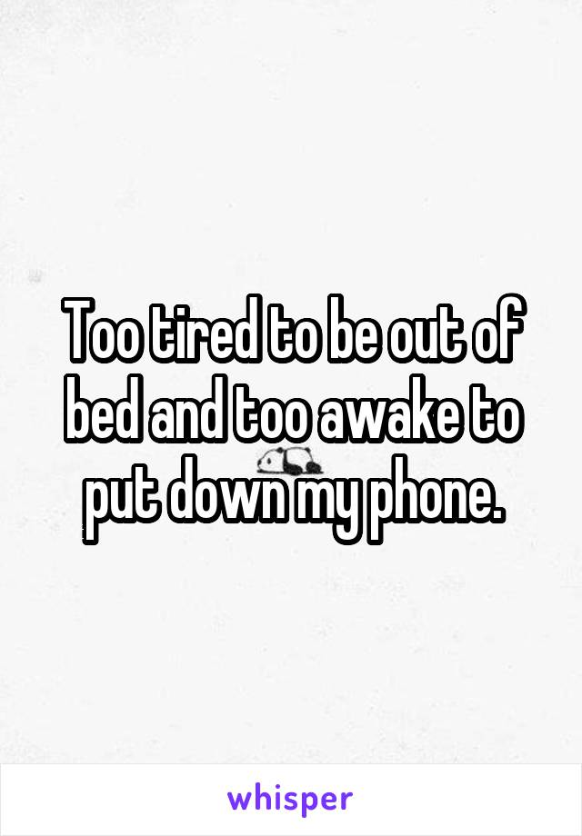 Too tired to be out of bed and too awake to put down my phone.