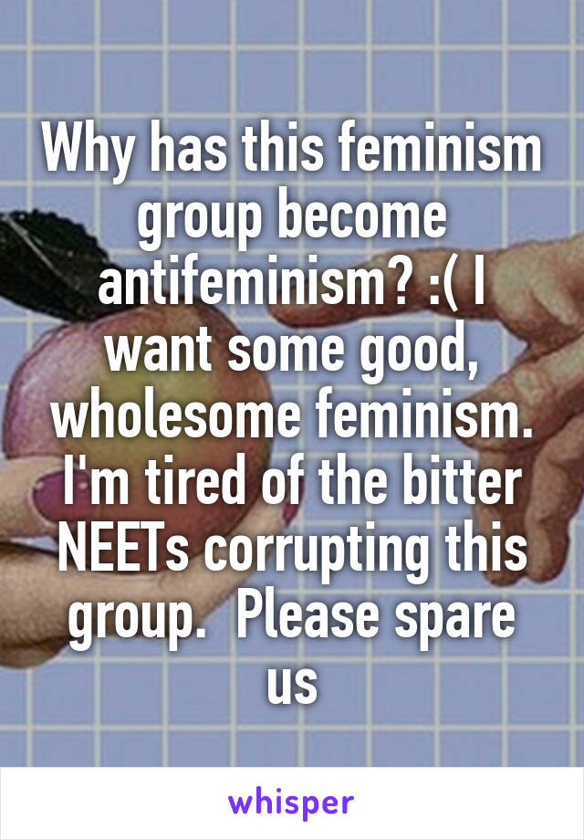 Why has this feminism group become antifeminism? :( I want some good, wholesome feminism. I'm tired of the bitter NEETs corrupting this group.  Please spare us