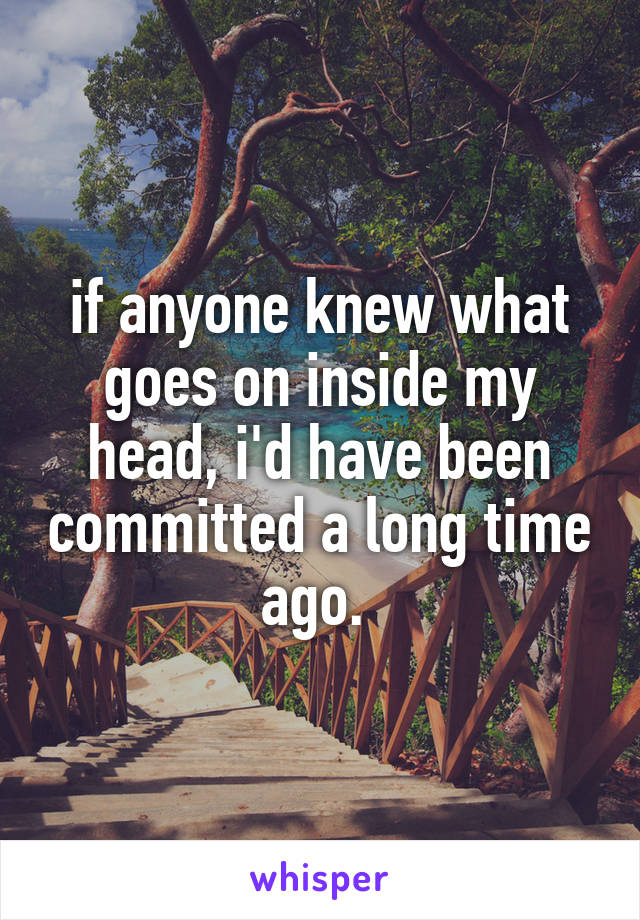 if anyone knew what goes on inside my head, i'd have been committed a long time ago.