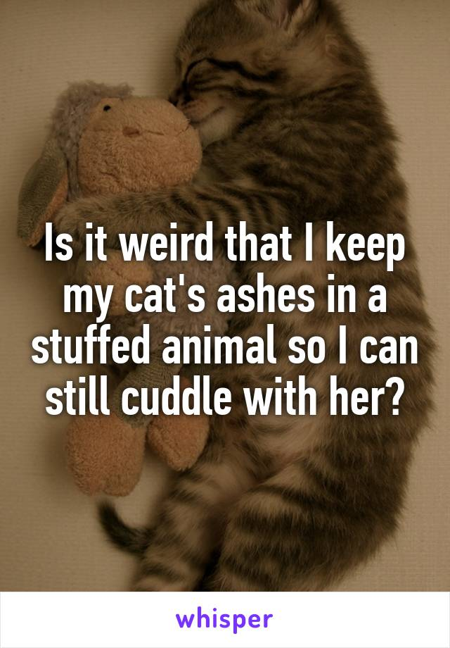 Is it weird that I keep my cat's ashes in a stuffed animal so I can still cuddle with her?