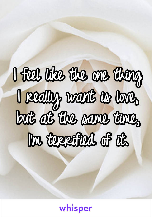 I feel like the one thing I really want is love, but at the same time, I'm terrified of it.