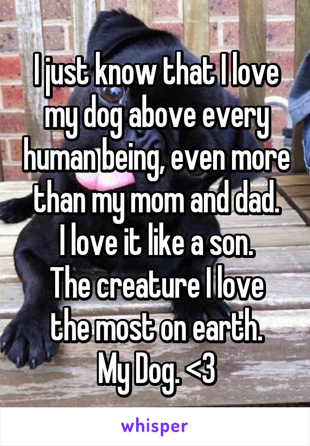 I just know that I love my dog above every human being, even more than my mom and dad. I love it like a son. The creature I love the most on earth. My Dog. <3