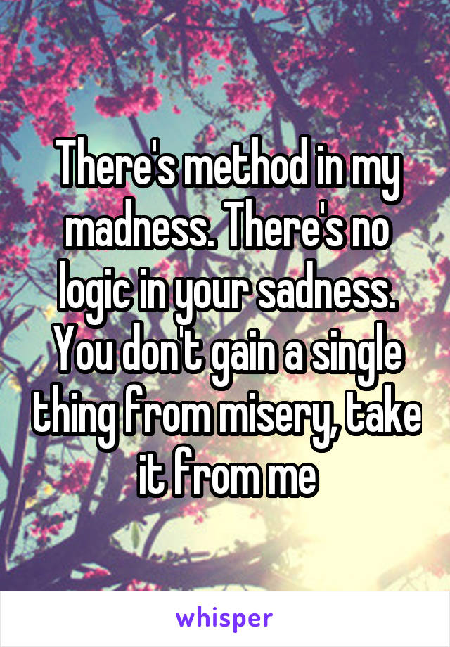 Theres Method In My Madness Theres No Logic In Your Sadness You