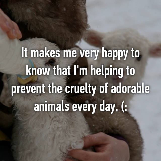 It makes me very happy to know that I'm helping to prevent the cruelty of adorable animals every day. (: