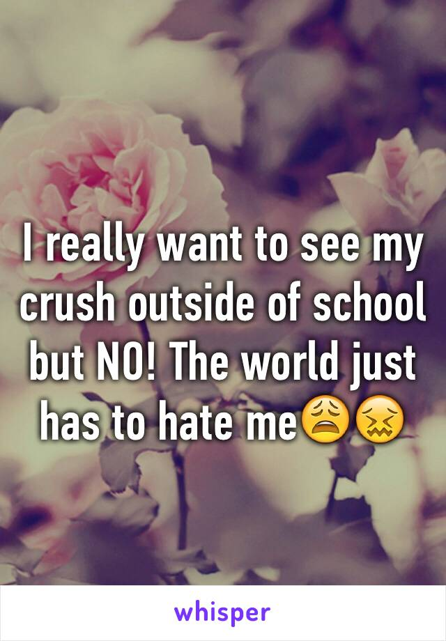 I really want to see my crush outside of school but NO! The world just has to hate me😩😖