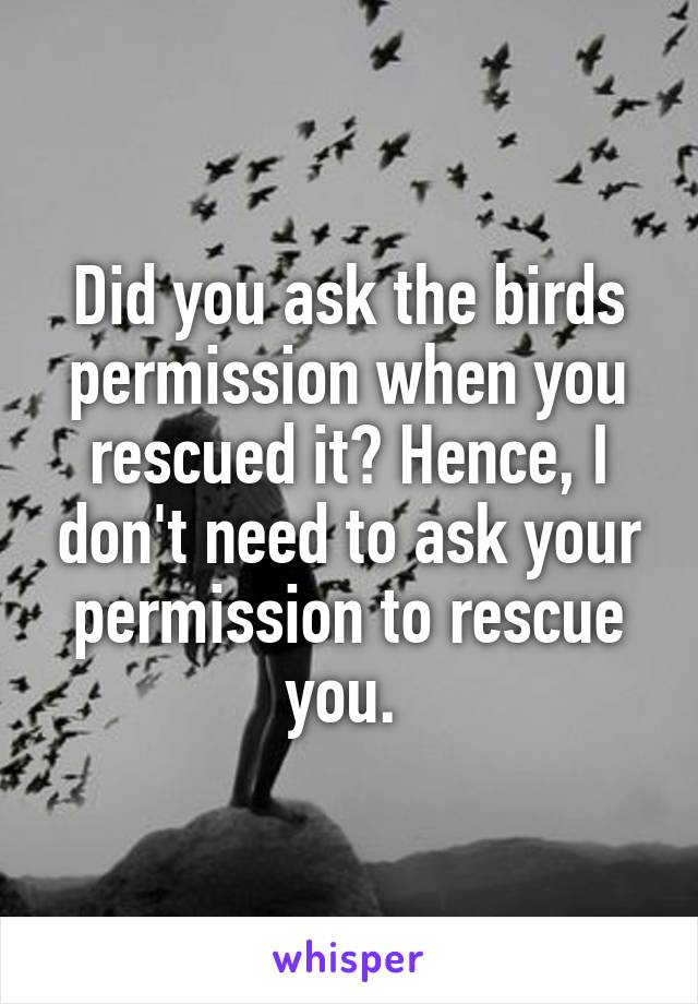 Did you ask the birds permission when you rescued it? Hence, I don't need to ask your permission to rescue you.
