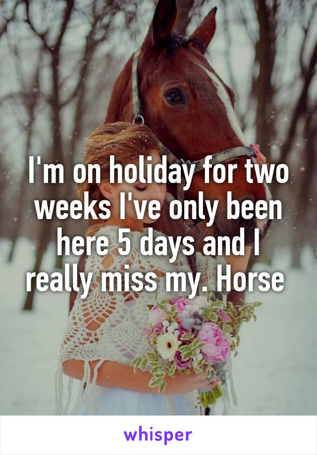 I'm on holiday for two weeks I've only been here 5 days and I really miss my. Horse