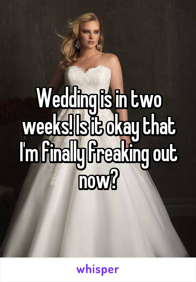 Wedding is in two weeks! Is it okay that I'm finally freaking out now?